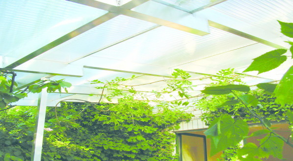 applications/commercial/commercial-canopies-light-roofing-2.jpg