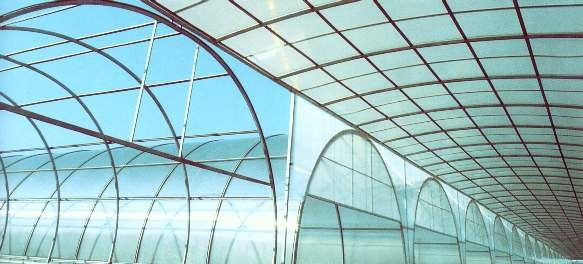 applications/greenhouses/commercial-greenhouse-4.jpg
