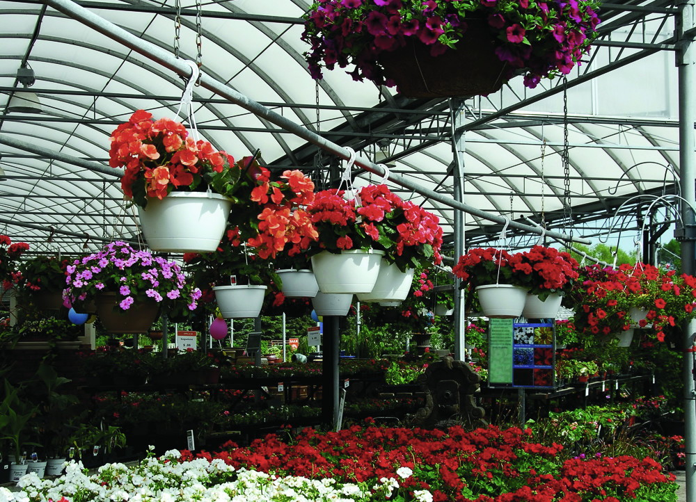 applications/greenhouses/commercial-greenhouse-9.jpg
